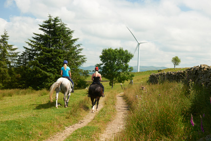 Bridal path across wind farm